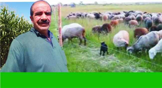 Ereğli Ziraat Odası Başkanı Çelik, Sürü Sahiplerini Uyardı