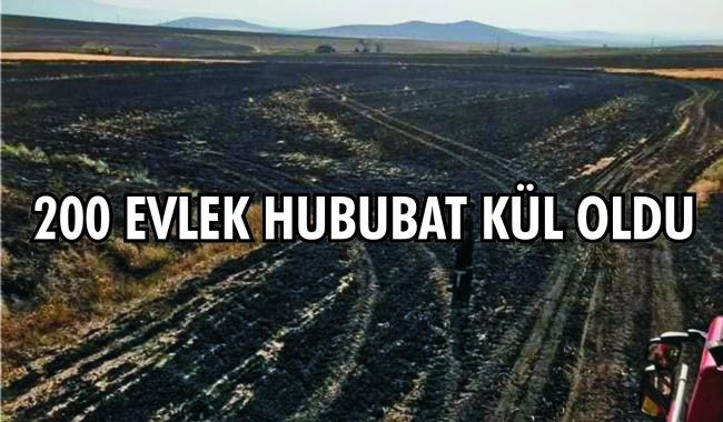 Halkapınar da buğday tarlası yandı
