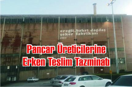 Ereğli Şeker Fabrikasından Pancar Üreticilerine Erken Teslim Tazminatı