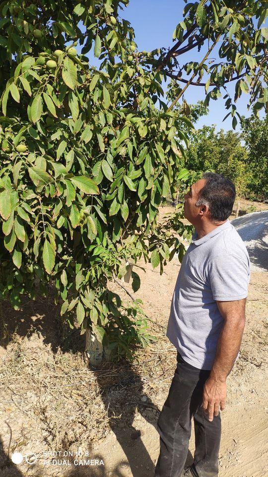 Tarım Müdürü Orhan Soylu denetimleri aralıksız sürdürüyor