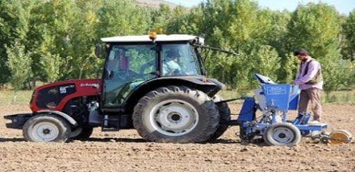 Ereğli'de sarımsak ekimi başladı