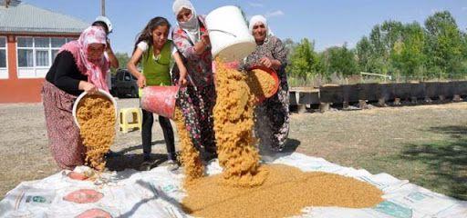 Ereğli'de kışlık bulgur hazırlıkları devam ediyor