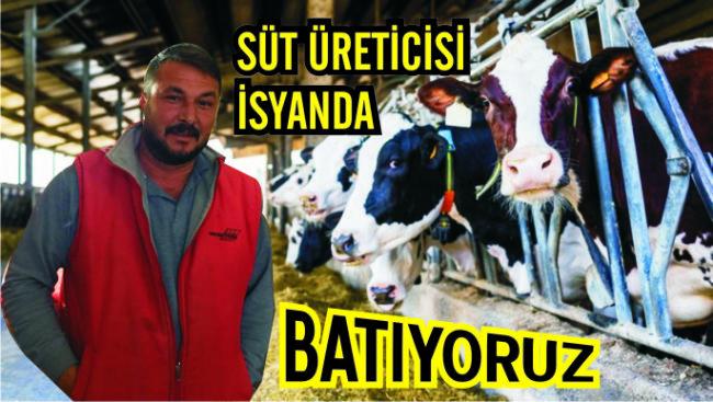 Ereğlili süt üreticisi isyanda