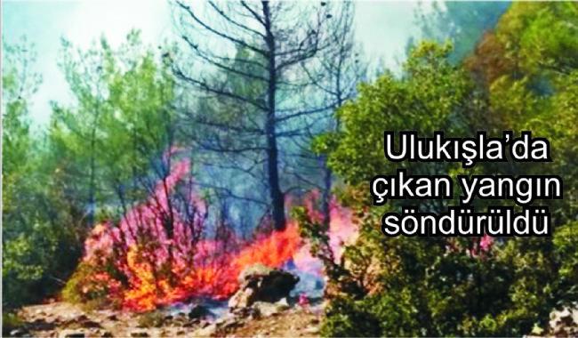Komşuda Çıkan Orman Yangını Korkuttu-
