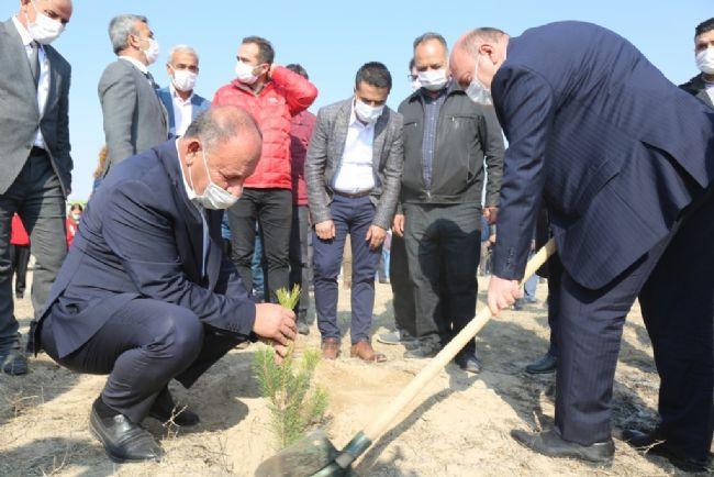 Ereğli Belediyesi binlerce fidanı toprakla buluşturdu