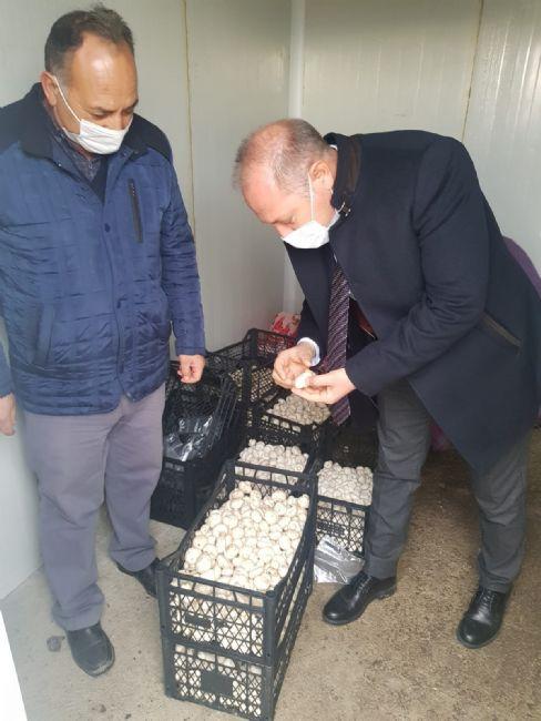 İlçe Tarım Müdürü Sarıca Kuzukuyu Mahallesinde