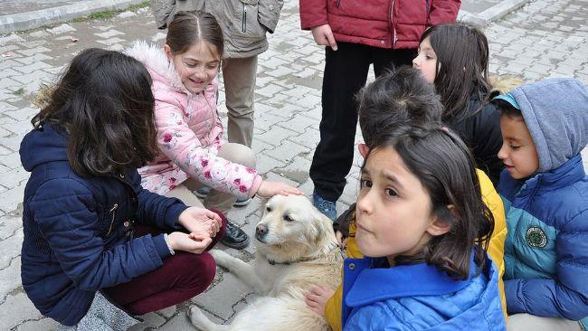 Doç. Dr. Selçuk Peker: Ereğlili çocukların hayvan beslemeye hakkı yok