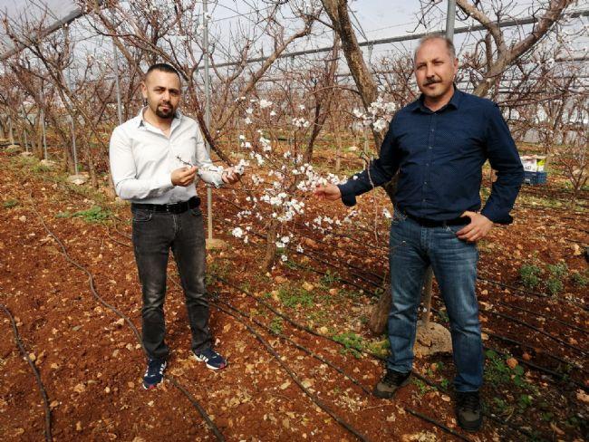 Ahmet Aydın Sarıca'dan Açıklama