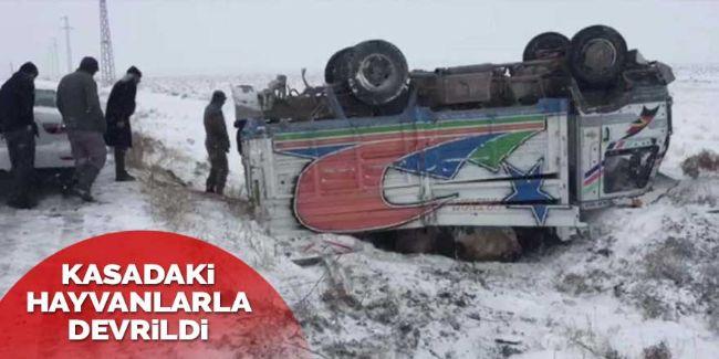 Ereğli-Emirgazi yolunda büyükbaş hayvanları taşıyan kamyon devrildi