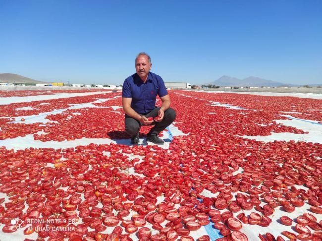 Ahmet Aydın Sarıca Ereğlili domates yetiştiricilerini ziyaret etti